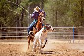 A Cowboy Riding A Horse Trying To Lasso A Running Calf During A Team Event At A Country Rodeo poster