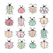 Big Line Hand Drawn Doodle Set With Insects And Bugs. Beetle, Butterfly, Moth Collection In Handdraw poster