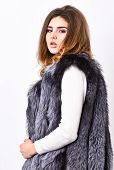 Luxury Fur Accessory Clothes. Fashion Trend Concept. Winter Fashionable Wardrobe For Female. Silver  poster