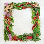 Herb leaf and spice wreath with a selection of fresh herbs with flowers on rustic wood background wi poster