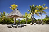 stock photo of mauritius  - Lounge Chair on the sand of the island of Mauritius among the palm trees - JPG