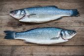 image of bass fish  - Two raw seabass fish on rustic wooden background - JPG