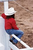 stock photo of brahma-bull  - A young cowgirl watches the rodeo action - JPG