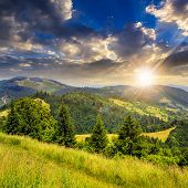 image of coniferous forest  - path in the grass on top of a of mountain range with coniferous forest at sunset - JPG