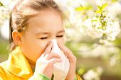 pic of blowing nose  - Little girl is blowing her nose near spring tree in bloom - JPG