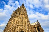 stock photo of dom  - Facade of the Dom church in the city Cologne lit by evening sun - JPG