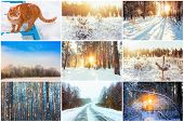 ������, ������: Collage Set Winter Theme