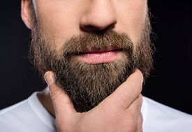 stock photo of long beard  - Beard man - JPG