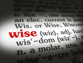 picture of wise  - Dictionary definition of the word  - JPG