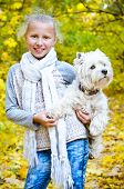 stock photo of west highland white terrier  - girl with west highland white terrier in the park - JPG
