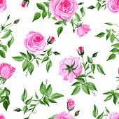 picture of french curves  - Watercolor pink rose seamless vector print - JPG