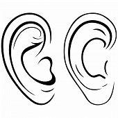 pic of human ear  - Drawing human ear - JPG