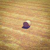 stock photo of hay bale  - Landscape with the Hay Bale Instagram Effect - JPG