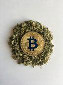 Gold Bitcoin Coin poster