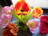 pic of get well soon  - half a dozen get well soon flowers non allergenic tulips lovely green vase - JPG