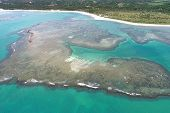 Vacation On Deserted Beach With Natural Pools In Brazil. Sao Miguel Dos Milagres, Alagoas, Brazil. F poster