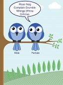 pic of moaning  - Humorous look at how to determine the gender of birds - JPG