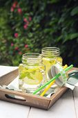Summer Refreshing Drink. Two Glasses Of Cool Pure Water, Lemon And Mint In The Garden, Open-air Drin poster