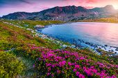 Stunning Mountain Sunset Landscape, Fantastic Campsite Near Bucura Lake. Camping Place With Colorful poster