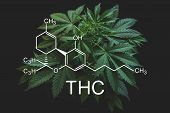 Thc Formula, Tetrahydrocannabinol . Despancery Business. Cannabinoids And Health, Hemp Industry, Cbd poster
