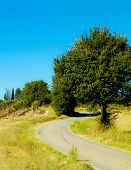 Offroad In Tuscany. Vineyards And Autumn Country Landscape, Agriculture And Nature Concept. poster