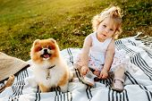 Little Girl And Pets. The Girl And A Dog Sitting On A Green Park. Pedigree Dogs Spitz. Funny Animals poster