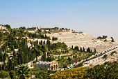 pic of gethsemane  - Gethsemane and the Church of all Nations on the Mount of olives in Jerusalem - JPG