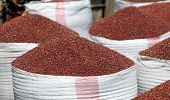 stock photo of sorghum  - Sorghum harvested and collected at the rural market of Muheto - JPG