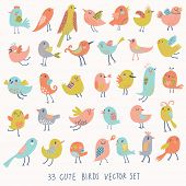 Set of 33 cute birds in vector. Cartoon collection with funny little bird family. poster