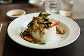 image of gai  - Thai spicy food basil chicken fried rice recipe  Krapao Gai - JPG