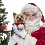 Close-up of Santa Claus holding a lapdog, isolated on white poster