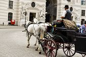 image of carriage horse  - Horse drawn carriage in Vienna transporting tourists - JPG