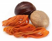 picture of mace  - Mace or Javitri Spice with nutmeg over white background - JPG