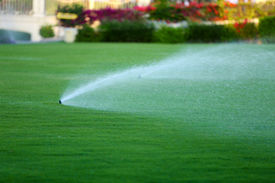 foto of fountain grass  - Automatic sprinklers watering grass - JPG