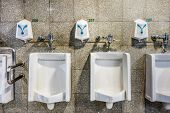stock photo of urinate  - urinals in an old building for men only - JPG