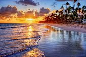 picture of inlet  - Brilliant ocean beach sunrise with palm trees - JPG