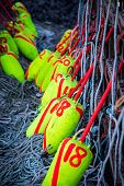 picture of lobster trap  - Colorful fishing buoys and lobster traps in Canada - JPG