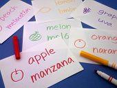image of card-making  - Making language flash cards for fundamental words - JPG