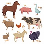 pic of pig head  - Farm animals set with horse pig sheep goat turkey isolated vector illustration - JPG