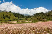 foto of kali  - Mount Dhaulagiri  - JPG
