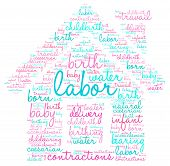 image of birth  - Home birth labor word cloud shaped as a house on a white background - JPG