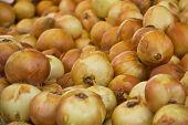 stock photo of onion  - onions on market close up yellow onions - JPG