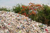 foto of dump  - Rubbish dump uncontrolled disposal site in the nature - JPG