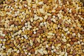 stock photo of mixed nut  - mixed nuts on market textures close up - JPG