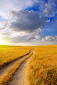 picture of steppes  - Dirt road in the steppe at dawn - JPG