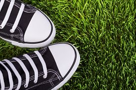 picture of grass  - Sneakers on the green grass youth shoes field of green grass shoes for young people a pair of black sneakers a new pair of sneakers walking in black gym shoes on a green grass shoes closeup - JPG