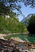 Tara river, Montenegro, Crna Gora poster