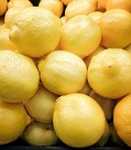 Постер, плакат: Yellow lemons in the supermarket