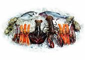 foto of crawdads  - lobsters shellfish and fish on ice - JPG