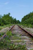Постер, плакат: Old Railway Tracks In Cape Breton Nova Scotia